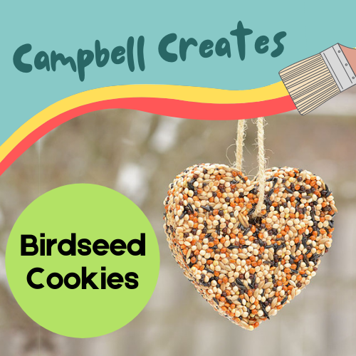 Campbell Creates birdseed cookies